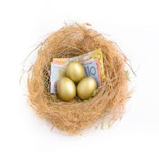 nest egg full of gold eggs and cash